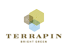Terrapin Bright Green